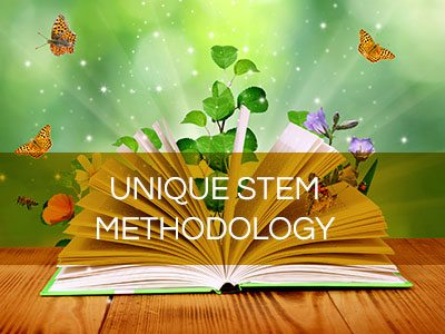 STEM Methodology